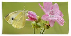 Cabbage White Butterfly On Flower Beach Towel by Silvia Reiche