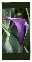Calla Lily In Purple Ombre Beach Towel by Rona Black