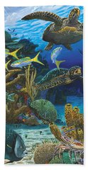 Cayman Turtles Re0010 Beach Towel by Carey Chen