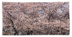 Cherry Blossoms Blooming In Springtime Beach Sheet by Panoramic Images