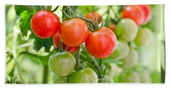 Cherry Tomatoes Beach Towel by Delphimages Photo Creations