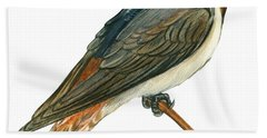Cliff Swallow  Beach Towel by Anonymous