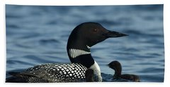 Common Loon Family Beach Sheet by James Peterson