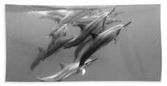 Dolphin Pod Beach Towel by Sean Davey