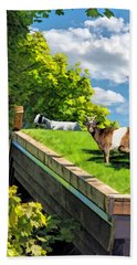 Door County Al Johnsons Swedish Restaurant Goats Beach Towel by Christopher Arndt