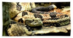 Eastern Diamondback Rattlesnake Beach Towel by Deena Stoddard