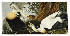 Eider Ducks Beach Towel by John James Audubon