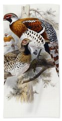 Elliot's Pheasant Beach Towel by Joseph Wolf