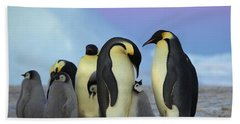 Emperor Penguin Parents And Chick Beach Sheet by Frederique Olivier
