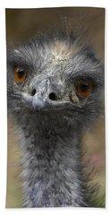 Emu Portrait Beach Sheet by San Diego Zoo