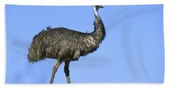 Emu Portrait Sturt National Park Beach Sheet by Konrad Wothe