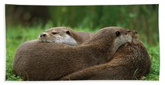 European River Otter Lutra Lutra Beach Sheet by Ingo Arndt