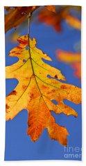 Fall Oak Leaf Beach Sheet by Elena Elisseeva