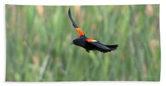Flight Of The Blackbird Beach Towel by Mike  Dawson