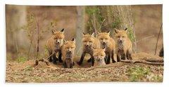 Fox Family Portrait Beach Towel by Everet Regal