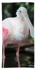 Friendly Spoonbill Beach Towel by Carol Groenen