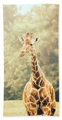 Giraffe In The Rain Beach Sheet by Pati Photography