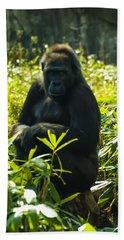 Gorilla Sitting On A Stump Beach Towel by Chris Flees