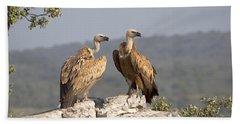 Griffon Vulture Pair Extremadura Spain Beach Sheet by Gerard de Hoog