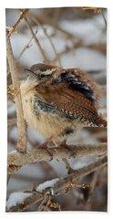 Grumpy Bird Beach Towel by Bill Wakeley