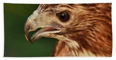 Hawk Eyes Beach Towel by Dan Sproul