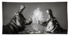Hippo's Fighting Beach Towel by Johan Swanepoel