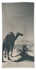 In The Hot Desert Sun Beach Towel by Laurie Search
