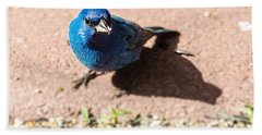 Indigo Bunting Beach Sheet by Jon Woodhams