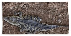Juvenile African Crocodile Beach Sheet by Douglas Barnard