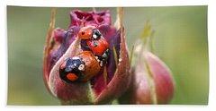 Ladybug Foursome Beach Towel by Rona Black