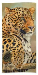 Leopard Beach Sheet by David Stribbling