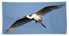 Low Angle View Of A Eurasian Spoonbill Beach Towel by Panoramic Images