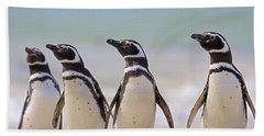 Magellanic Penguins Carcass Island Beach Towel by Heike Odermatt