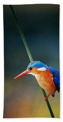 Malachite Kingfisher Beach Sheet by Johan Swanepoel
