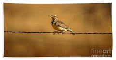 Meadowlark And Barbed Wire Beach Towel by Robert Frederick