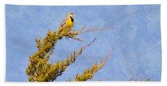 Meadowlark Serenade Beach Sheet by Deena Stoddard