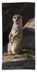 Meerkat Looking Forward Beach Sheet by Chris Flees
