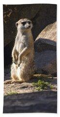Meerkat Looking Left Beach Sheet by Chris Flees