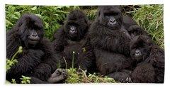 Mountain Gorilla Susa Group Beach Towel by Ingo Arndt