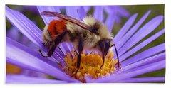 Orange-banded Bee Beach Sheet by Rona Black