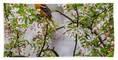 Oriole In Crabapple Tree Square Beach Towel by Bill Wakeley