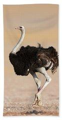 Ostrich Beach Sheet by Johan Swanepoel