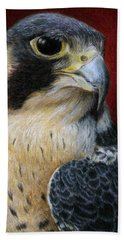Peregrine Falcon Beach Towel by Pat Erickson