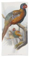 Phasianus Elegans Elegant Pheasant Beach Sheet by Daniel Girard Elliot