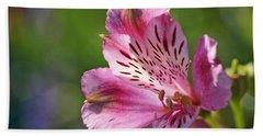 Pink Alstroemeria Flower Beach Sheet by Rona Black