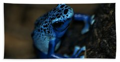 Poisonous Blue Frog 02 Beach Sheet by Thomas Woolworth