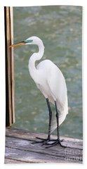 Pretty Great Egret Beach Towel by Carol Groenen