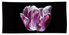 Purple And White Marbled Tulip Beach Towel by Rona Black