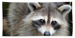 Raccoon Eyes Beach Sheet by Carol Groenen