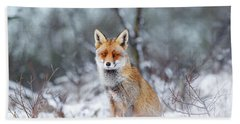 Red Fox Blue World Beach Towel by Roeselien Raimond